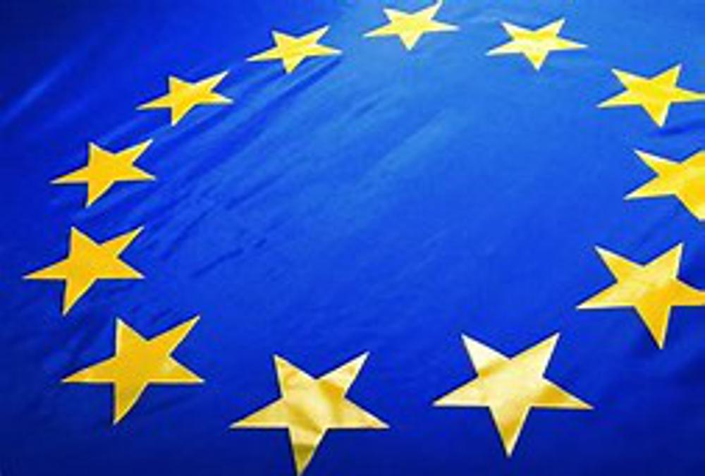 EU flag sized
